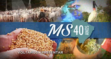 TV MS  40 anos de MS - Taurus
