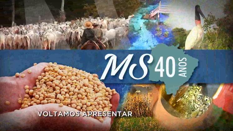 TV MS  40 anos de MS - Taurus