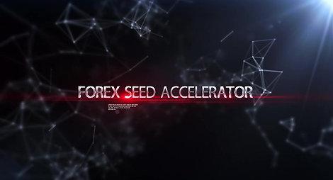 FX Seed Acelerator Explained