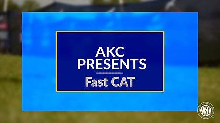 AKC Presents FastCAT