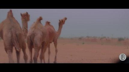 Renault Duster - Rajasthan