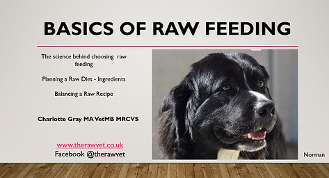 Raw Doesn't Have to Be Guesswork - Basics of Raw Feeding from The RAW Vet £9.00