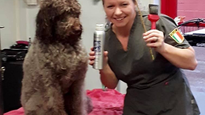 1st Review by Groomies