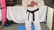 Kihon - Basic Punches