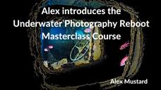 Underwater Photography Reboot