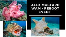 WAM Reboot with Alex Mustard