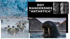 Antartica With Roy Mangersnes