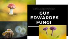 Guy Edwardes Creating Stunning Fungi Images