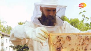 Honig aus dem Pfarrgarten