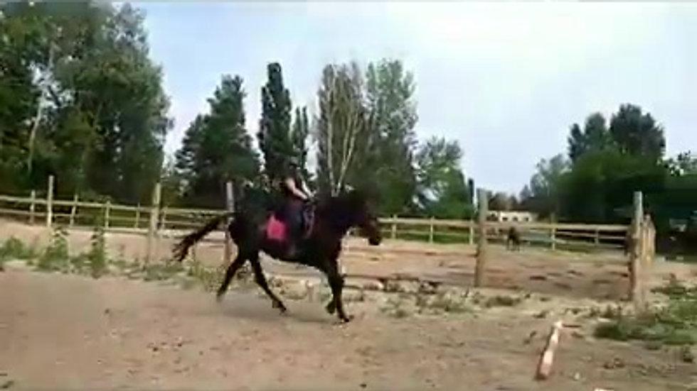 Тренировка с Оксаной Важинской