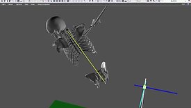 3D Pelvis Thorax Lateral Flexion