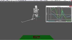 3D Trail Wrist Orientation