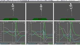 3D Lead Wrist Orientation Comparison