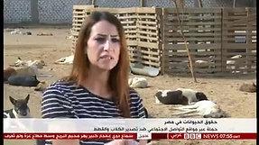 TV Interview - 03.12.2018