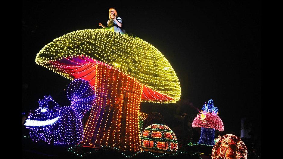 Webseite Disneyland