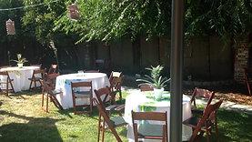 Hawaiian themed backyard party