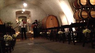 Violin and guitar ceremony sample