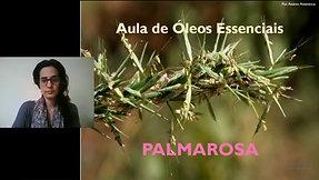 Aula óleo essencial de Palmarosa