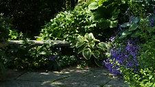 Der englische Garten in der Stadt Zürich_3sat