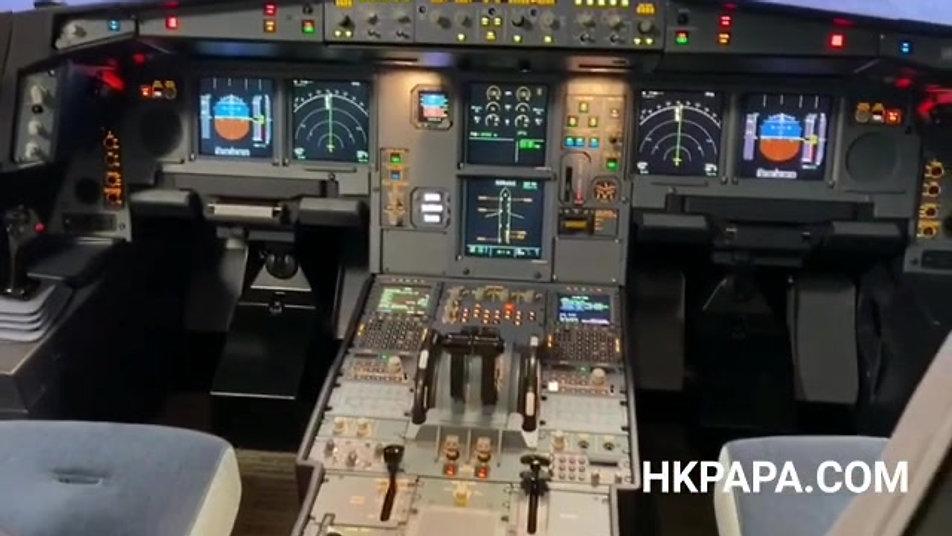 A330 Flight Experience