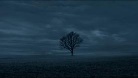 TAKE ME TO A NICE PLACE Trailer | Kristof Brandl