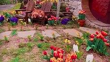 El verdadero Hobbit Village en Matamata, Nueva Zelanda