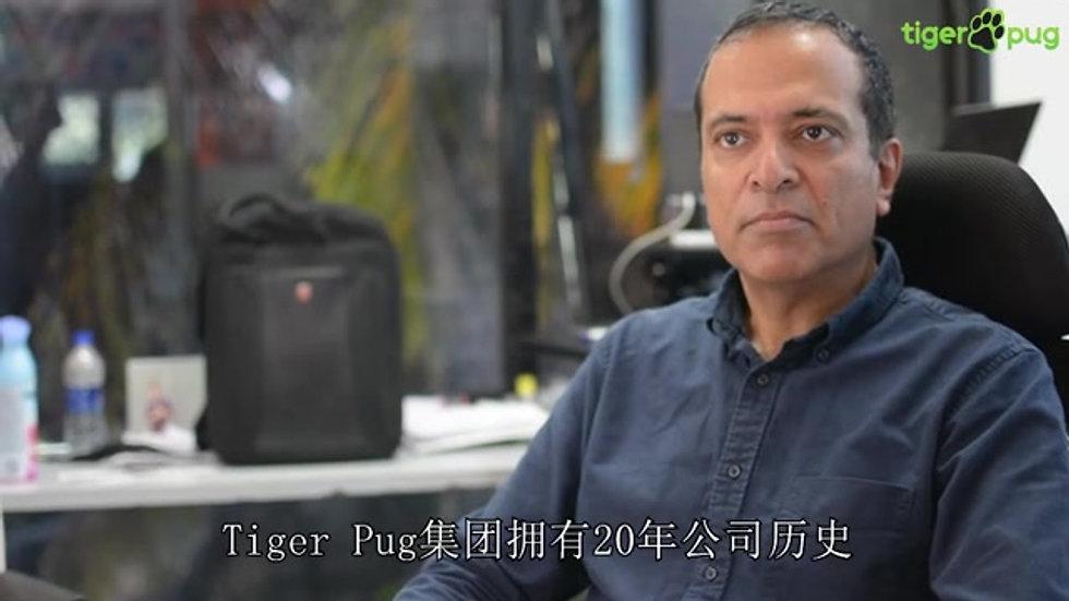 tigerpug公司介绍