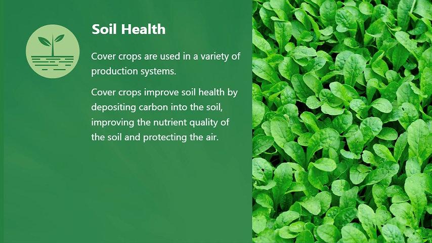 10. Healthy Soils
