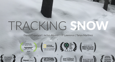 Tracking Snow