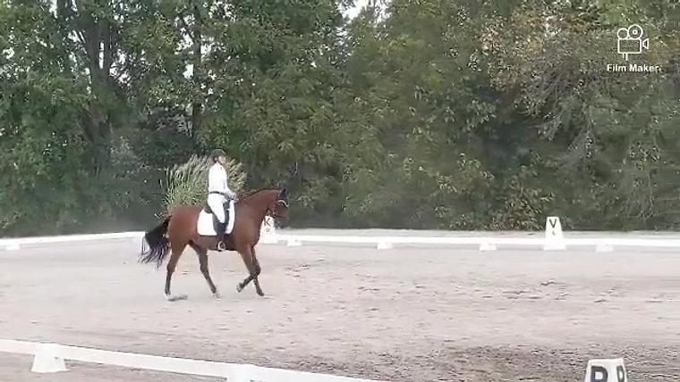 Flying Cross Farm Horse Trials
