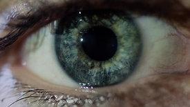 Eyes Wide Open   DOK.fest München   Cinema Ad 2