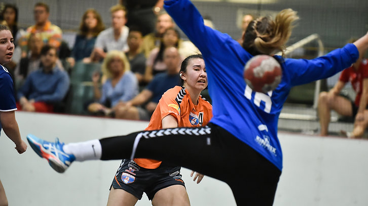Handball at Home