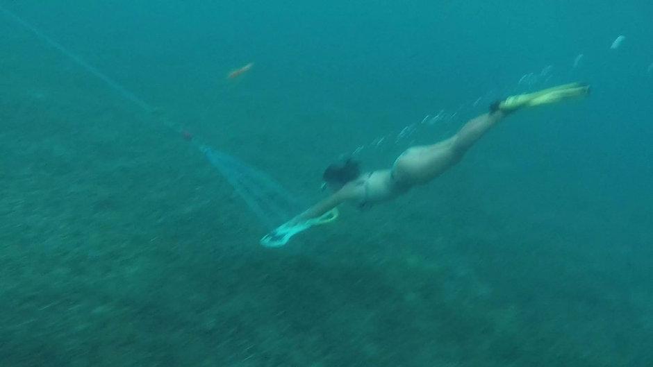 Vivez l'expérience de l'Aile sous-marine