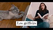 BLOG À POILS - LES GRIFFOIRS