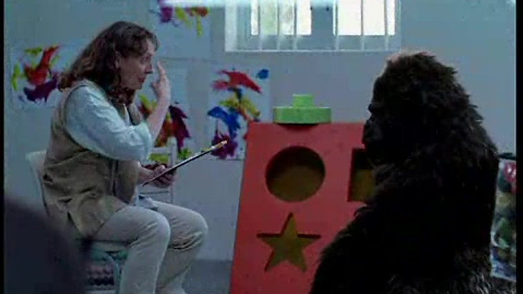 Versatel - Gorilla