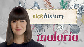 Bill and Melinda Gates Foundation SickHistory Malaria