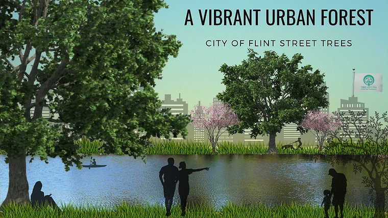 A Vibrant Urban Forest
