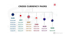 FOREX CURRENCY PAIRS DIVIDION