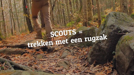 scouts-website