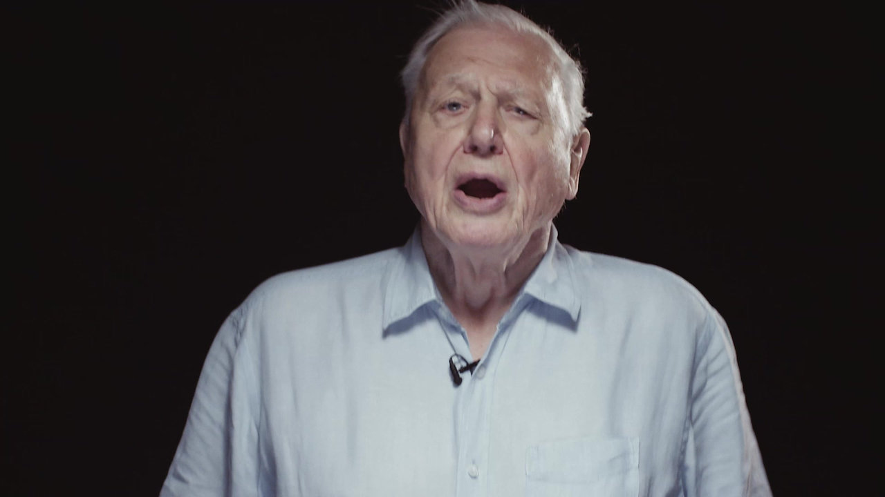 Nature Recovery - ft. David Attenborough