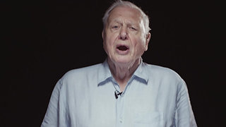 Nature Recovery - ft. David Attenborough