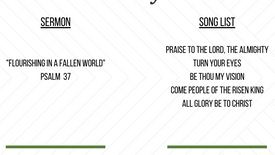 """""""Flourishing in a Fallen World"""" from Psalm 37 by Pastor Stephen Cavness"""