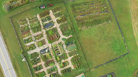 Aerial Views :Joppa Hill Farm