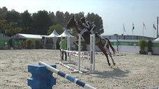 Horses Inside Out at WEG 2010