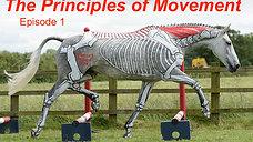 Trailer: Principles of Movement E1