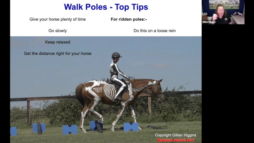Poles for Posture