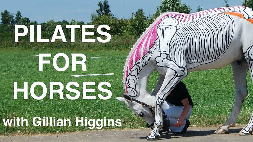 Pilates for Horses Webinar