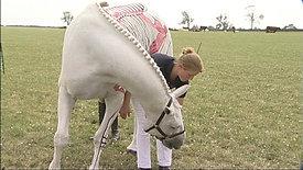 Pilates for Horses DVD Trailer