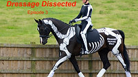 Trailer: Dressage Dissected E3