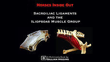 eBOOK Trailer - Sacroiliac Ligaments and Iliopsoas Muscles Multimedia Book